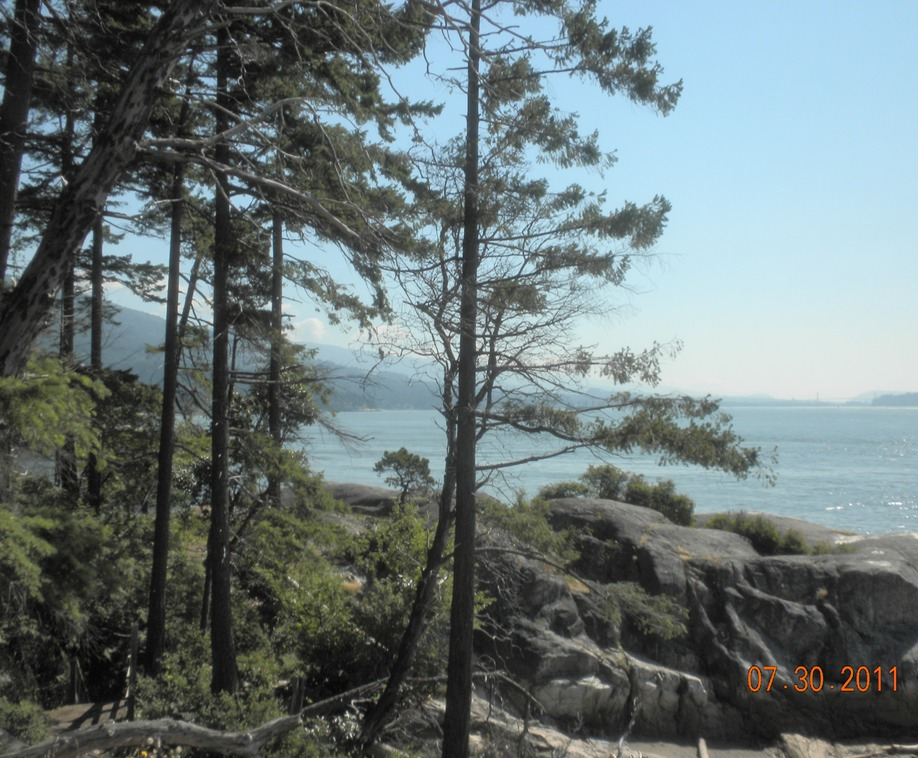 Lighthouse park view